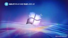 电脑公司win10国语完美版64位v2021.10